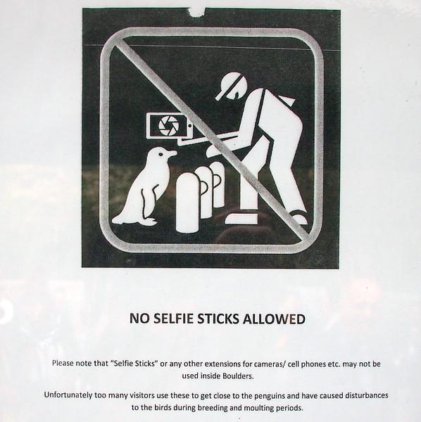 P5197275-no-selfie-sticks.JPG