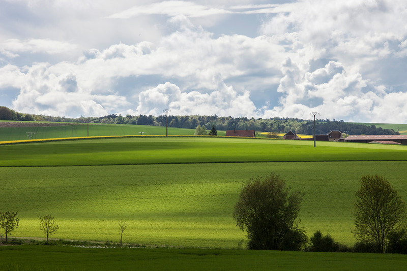 Pays-d'Othe Wheat Fields