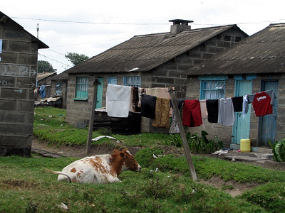 Scenes of Kenya