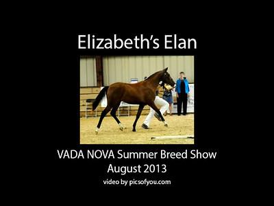 Elizabeth's Elan