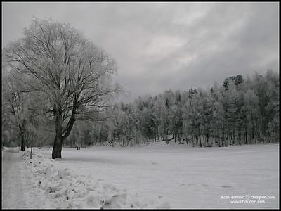 31 DECEMBER 2009: NYÅRSAFTON