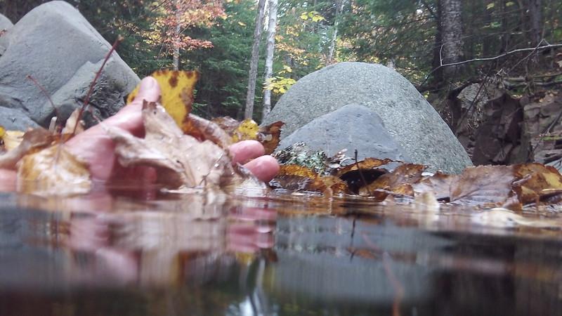 20131003__0035105_4261_lindskoog_creek_autumn_dip_cook_county.JPG