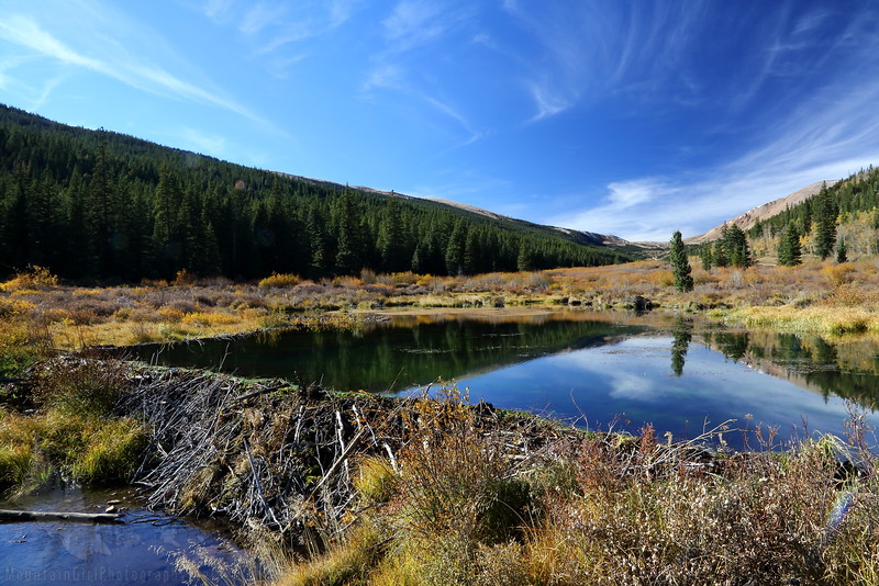Beaver Pond on Weston Pass