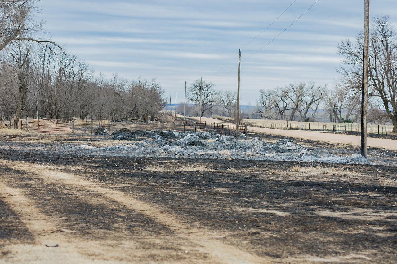 Photo by Dana Rich Photography<br /> In the fire's aftermath, millions of acres of hay and hay bales were reduced to nothing but a heap of ash. But some help was on the horizon.