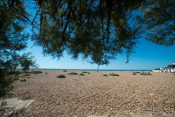 Janine Lowe Beach-251.jpg