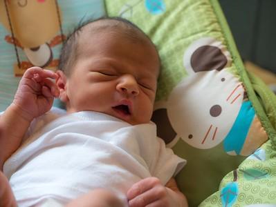 150714-Baby Phoebe & Family