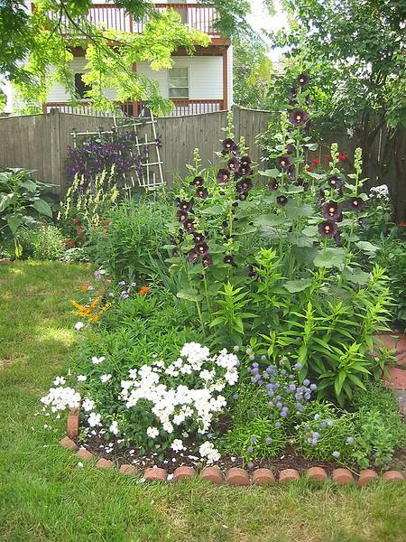 garden-2005-07-0239_std.jpg