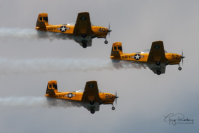 Gary Lakefront Airshows