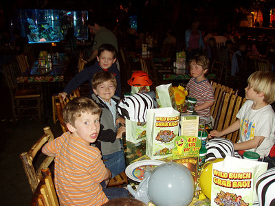 Lance's Birthday Rainforest Cafe 6th Birthday