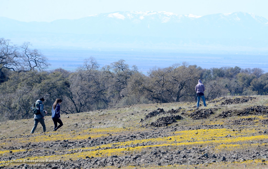 . Cliff Chao left and Holly Shafer of Davis head out on a stroll through the wildflowers just beginning to bloom on Table Mountain Monday March 5, 2018. Hikers 16-years or older are now required to have a Lands Pass or valid hunting or fishing license. (Bill Husa -- Enterprise-Record)