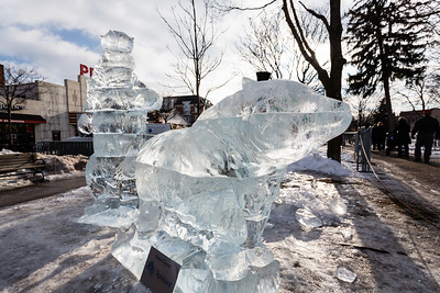 Plymouth Ice Sculptures 2014