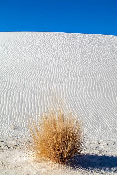 White Sands Monument