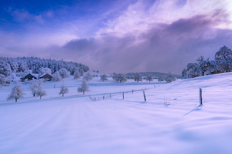 Winterthur-Winter-04345.jpg