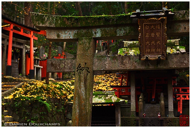 Fushimi-Inari-Taisha Shrine