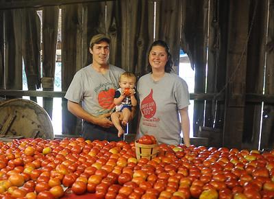 Tomato Story