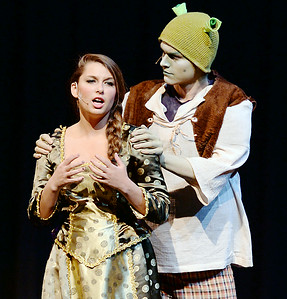 Shrek The Musical At Tryon