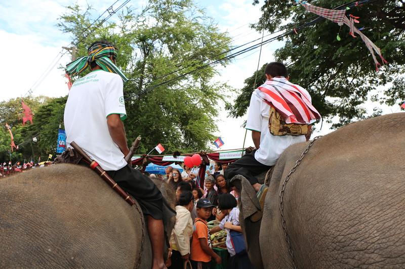 2014-11-14 Surin Elephant Welcome Feast 353.JPG