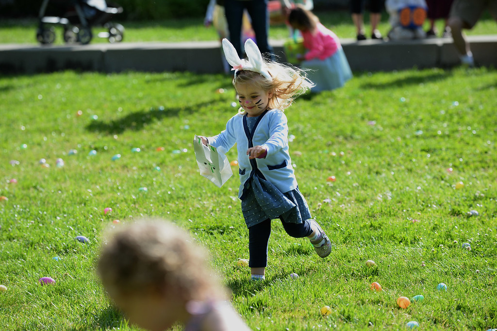 ". Claire Thompkins, 3, of Danville, races out to collect Easter eggs at the Town of Danville\'s ""Eggstravaganza\"" held at the Danville Community Center in Danville, Calif., on Saturday, April 12, 2014. The event featured egg hunts for children of all ages as well as fun activities and snacks. (Dan Honda/Bay Area News Group)"