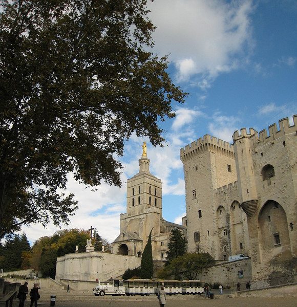 Avignon, France - Cathedral Notre-Dame and Palace of the Popes