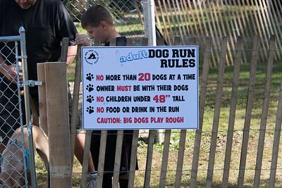Dog Play Areas