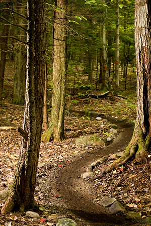 Trails I Ride and Ski