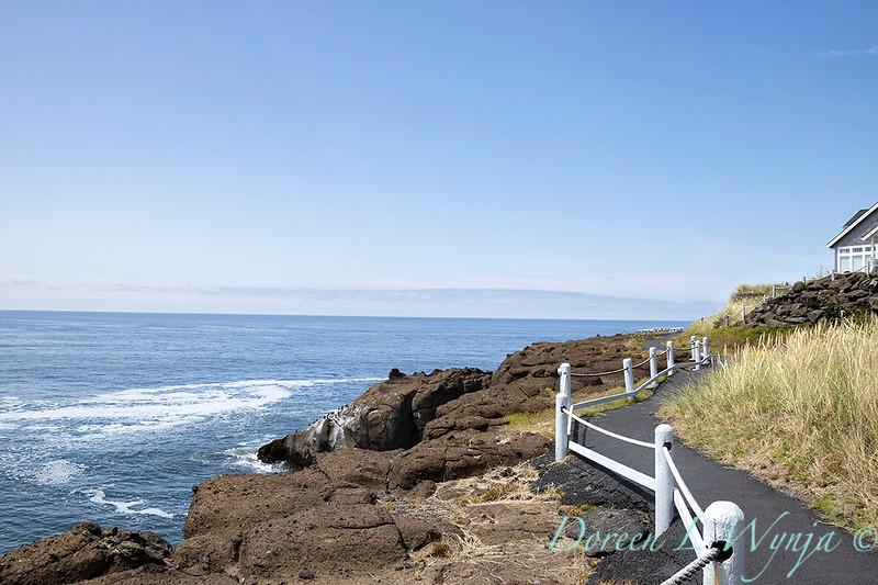 Walking path along the shoreline_9451.jpg