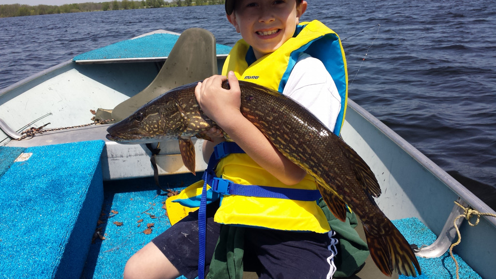 . Hang on! Montgomery Longtin, 9, of North Branch, brought in this 34-inch northern on Rush Lake May 25. (Photo courtesy Eric Longtin)
