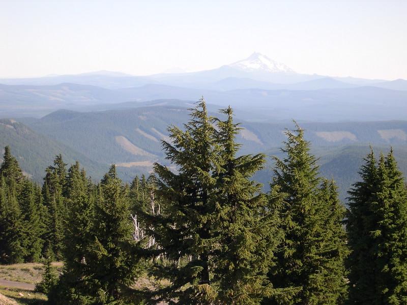 (2004  August 7-10) Mount Adams, Mount St. Helens, Washington.