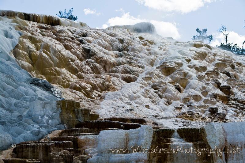 20100713_Yellowstone_2828_1.jpg