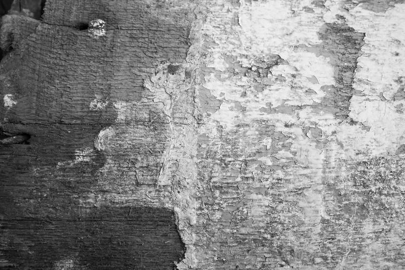 Wood Peeling Paint_3bw.jpg