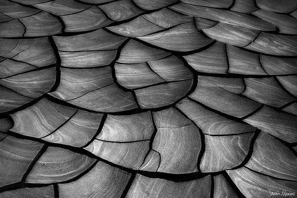 Black + White: Abstracts and Patterns