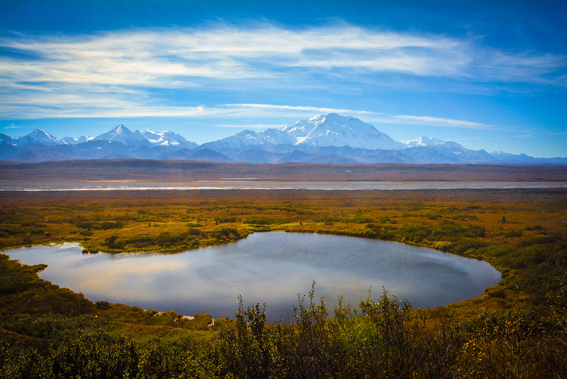 Denali-National-Park-137.jpg