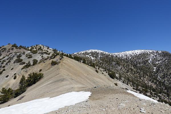 Bear Canyon Trail to 8,992 - May 5, 2019