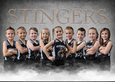 Lil Stingers