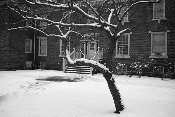 Snow in Greene