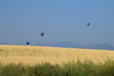 Hot Air Balloons Erie, Colorado 2017-08-28