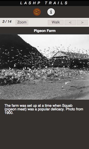PIGEON FARM 03.png