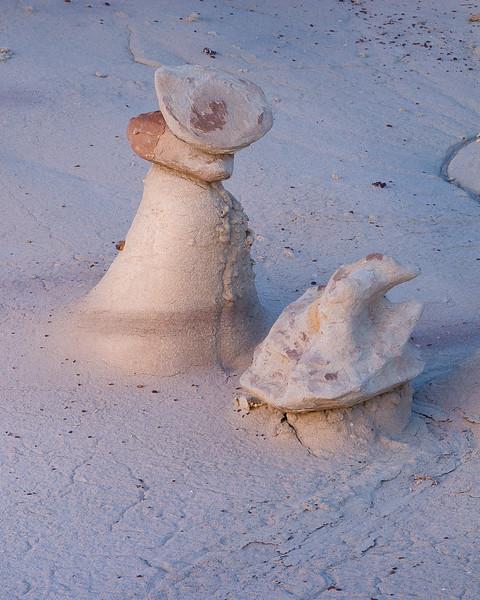Bisti Sombreros
