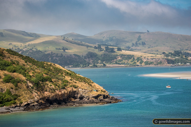 Otago Harbour Mouth