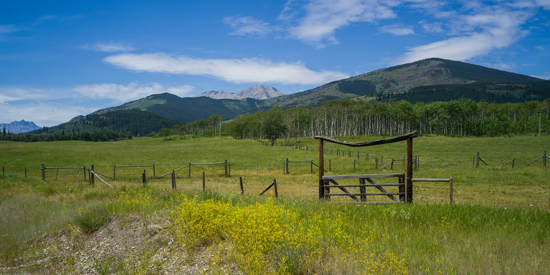 Ranch gate, Cowboy Trail, Eden Valley, Southern Alberta, Alberta, Canada