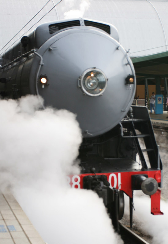 """All aboard!  To the piercing hiss of super-heated steam from valves, pipes and pistons, vintage locomotive, 3801, pulled away from Central with 400 passengers including 14 camera-toting members of NCP on Sunday, 26th March.  Her arrival at platform one in reverse and recently re-painted in her original, WWII (1943) drab grey, the big streamliner, flag-ship of her 30-strong class and probably of the whole NSWGR fleet, sent photographers scurrying for vantage points. Susan played it smart and stood on platform 2, Chris went to see the engine re-coupled at the """"Melbourne end"""" while Peter conned his way onto the footplate to record some action with the fireman shovelling coal into the furnace from hell. (Amazing what favours you can pull with a big SLR!).  The 205 tonne behemoth, the only Australian locomotive to have visited all States and Territories in Australia, is more familiarly seen in green. In her 63-year lifetime, she has been, in order, grey, green with yellow stripes, black with red stripes, back to green and, now, for the first time since 1943, back to grey. Gospel, according to members of  3801 Limited, is that this is as much a political stand as anything else. Her future is uncertain and it would be a tragedy if the reversion to grey were to portend the end to her working days. Perhaps the gentleman who owns the private carriage coupled up for this trip, might be in a position to resolve the issue?  We settled into our seats in the carriages, which appear to have seen service as the Newcastle """"Flyer"""" and the """"Melbourne Limited"""". Flying past almost empty suburban stations gave a sense of importance, the urgency of 3801's syncopatic beat adding to the aura. Only the old """"clicketty-clack, clicketty- clack"""", as the carriage wheels rode over the rail joints, was missing. Welded rails have a lot to answer for. Nostalgia """"Ain't what it used to be"""".  The subject of conversations varied as NCP members mixed with others sharing their compartment spaces. The volunt"""
