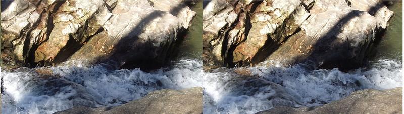 Moss Rock Preserve 2/22/2020