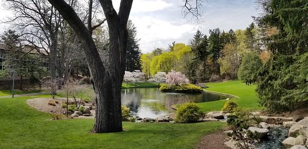 Seminary Pond