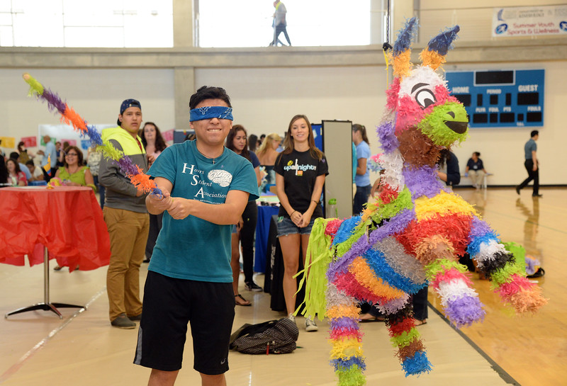 a-student-takes-a-whack-at-a-piata-during-islander-cultural-alliances-hispanic-heritage-month-kickoff-celebration_15246364856_o.jpg