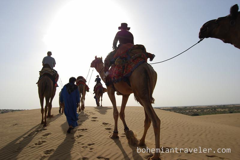 Rajasthan Camel Safari (3).jpg