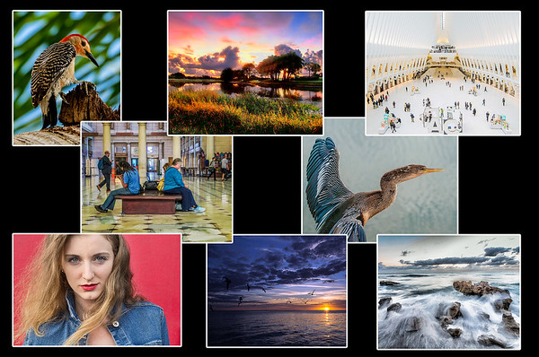 Featured Photographer Apr / May 2017 (Completed)