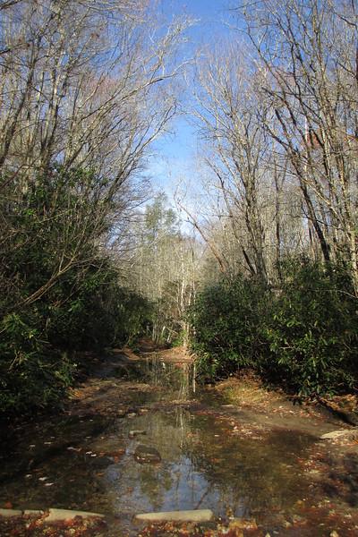 Panthertown Valley Trail - 3,650'