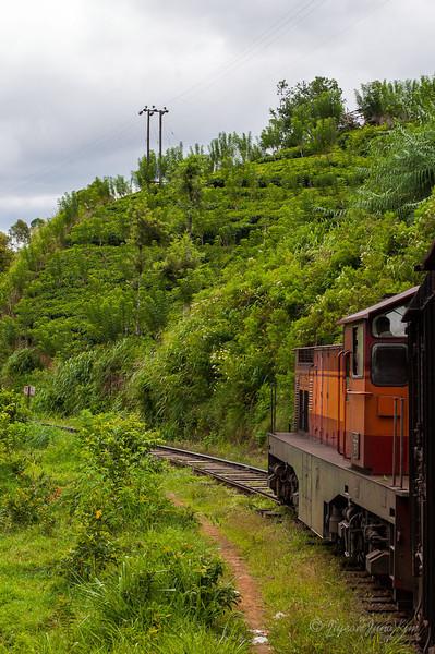 Scenery along the train ride to Ella