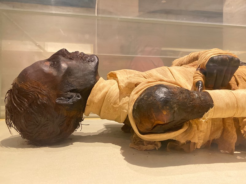 After death, the pharaohs of Egypt usually were mummified and buried in elaborate tombs.