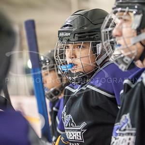 Chantilly Chargers Ice Hockey v North Stafford, Friday, November 22, 2013